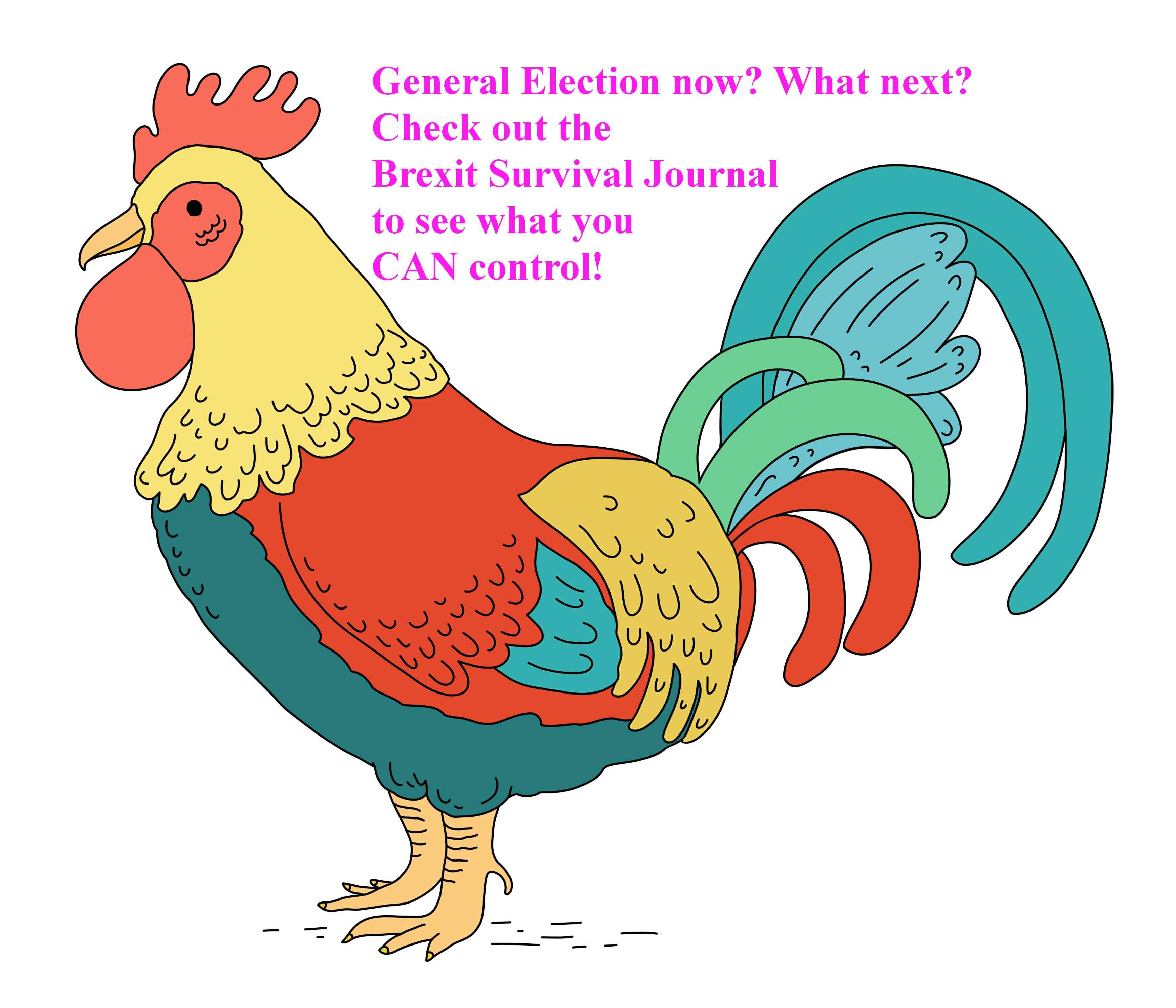 www.brexitsurvivaljournal.com